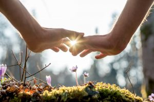 WHAT ARE SOME HOLISTIC THERAPIES FOR OPTIMAL IMMUNE FUNCTION?